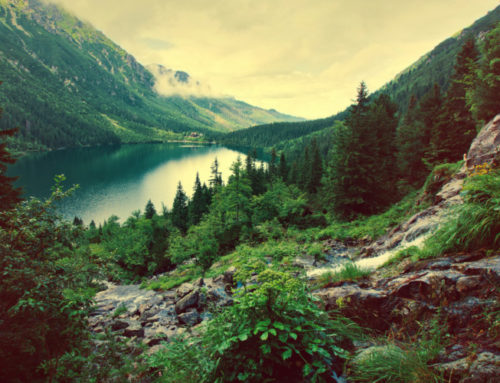 Las mejores piscinas naturales del Pirineo Aragonés
